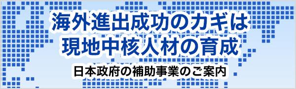 日本政府の補助事業のご案内